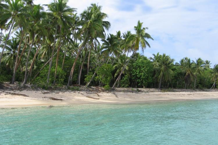 BEACHFRONT 5 AC $59.8K BEAUTIFUL , Tonga