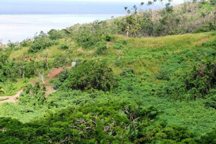 10 acres of ocean view property for sale in Savusavu Fiji