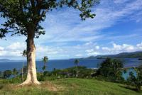 Twenty seven Fijian freehold land titles are now available in Natewa Bay, Fiji